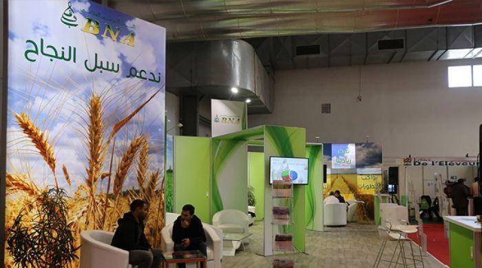 Foire internationale de Sousse workshop BNA 10