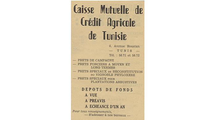 Selection - 60ème Anniversaire